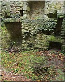 NS3578 : Kilmahew Castle - old well by Lairich Rig