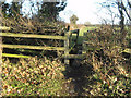 NZ2415 : Stile and sleeper bridge over ditch by peter robinson