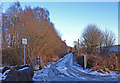 NS4466 : Icy Track leading to Moss Cottage by wfmillar