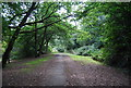 TQ5839 : Footpath across the common by N Chadwick