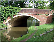 SO9262 : Canal bridge at Hanbury Junction, Worcestershire by Roger  Kidd