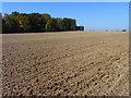 TL1330 : Farmland, Shillington by Andrew Smith