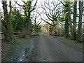 TQ0721 : Gateway to Heathcote by Dave Spicer