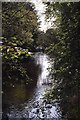 SJ9791 : Bredbury and Romiley : Etherow Country Park by Ken Bagnall
