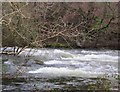SH5059 : Meini yn Afon Gwyrfai 2 / Boulders in Afon Gwyrfai 2 by Ceri Thomas