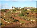 SW3627 : Houses at Tregiffian by Rod Allday