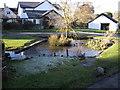 SS9674 : Village pond, Llysworney by John Lord