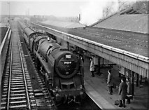 SP8633 : Bletchley Station, with Down Relief express by Ben Brooksbank