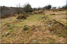 SX6870 : Remains of longhouse by Guy Wareham