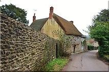 ST5707 : Melbury Osmond:  Holt Lane by Eugene Birchall