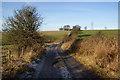 SD6930 : Track to Eddy Holes by Bill Boaden