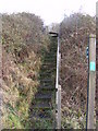 TM3763 : Steps to the footpath to Brook Farm Road & Sandy Lane by Adrian Cable