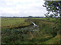 TG3404 : Drainage channel on Claxton Marsh by Glen Denny