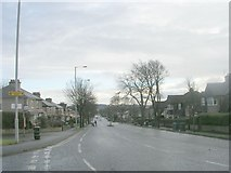 SE1735 : Pullan Avenue - viewed from Stone Hall Lane by Betty Longbottom