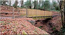 J4681 : Footbridge, Crawfordsburn Country Park (4) by Albert Bridge