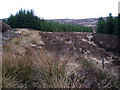 NR8561 : Forestry South of Cnoc an Tobair (2) by Steve Partridge