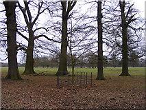 SJ5409 : Attingham Park View by Gordon Griffiths