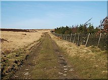 SE0120 : Greave Road, Greave Head by michael ely