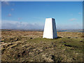 SE0122 : Trig pillar on Crow Hill by michael ely
