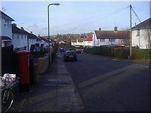 TQ2087 : Bush Grove, Kingsbury by David Howard