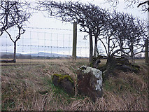 SD6074 : Boundary stone, Coneygarth Lane by Karl and Ali