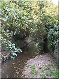 TQ3870 : The River Ravensbourne east of Ravensmead Road, BR2 by Mike Quinn