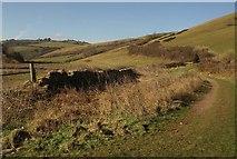 SX9253 : Wall and path, Man Sands by Derek Harper