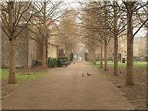 TQ3480 : Waterside Gardens, Wapping by Derek Harper
