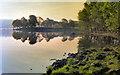 NY3701 : Low Wray Bay by David Dixon