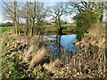 TG0626 : Small pond beside Reepham Road, Guestwick by Evelyn Simak