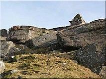 NZ0490 : Codger Fort by Oliver Dixon
