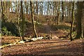 SJ6576 : Hillside Path by Galatas