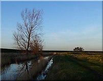 TQ7178 : Marsh landscape near Lower Hope Point by Stefan Czapski