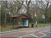 TQ2372 : Bus stop, Wimbledon Common by Stacey Harris