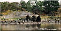 J3580 : Whitehouse lagoon, Newtownabbey (3) by Albert Bridge