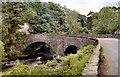 NY3603 : Brathay Bridge by David Dixon