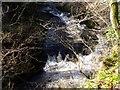 NS7883 : River Carron by Robert Murray