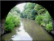 SO9969 : The canal north-east of Tardebigge Tunnel, Worcestershire by Roger  Kidd