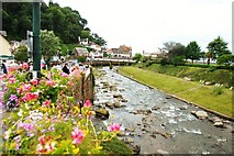 SS7249 : Lynmouth:  View along East Lyn River by Mr Eugene Birchall