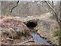 NS7773 : Cumbernauld, Glencryan Burn by Robert Murray