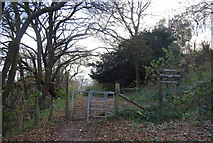 TQ8058 : North Downs Way enters White Horse Wood Country Park by N Chadwick