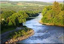 NN9357 : River Tummel Bank by John MacKenzie