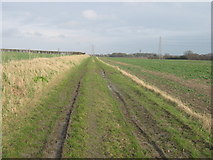 TR3156 : Footpath to Sandwich by David Anstiss