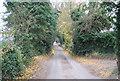 TQ7759 : Pilgrims' Way by N Chadwick