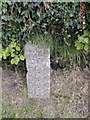 SX3267 : Take Off Stone, Cadson, St Ive, Cornwall by Vivien Hughes