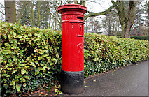 J3773 : Pillar box, Belfast by Albert Bridge