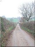 SX9894 : Mosshayne Lane by David Smith