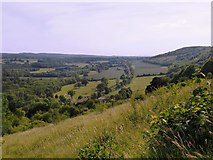 TQ1350 : Downland meadows at Ranmore, with a view westward along the North Downs scarp by Stefan Czapski