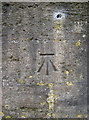 ST6965 : Cut benchmark on All Saints Church, Corston by Neil Owen