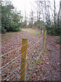 SU6062 : Wire fence - Tadley Common by Given Up